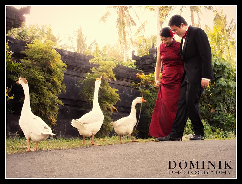 Best Bali-Pre-Wedding-Photo-horses