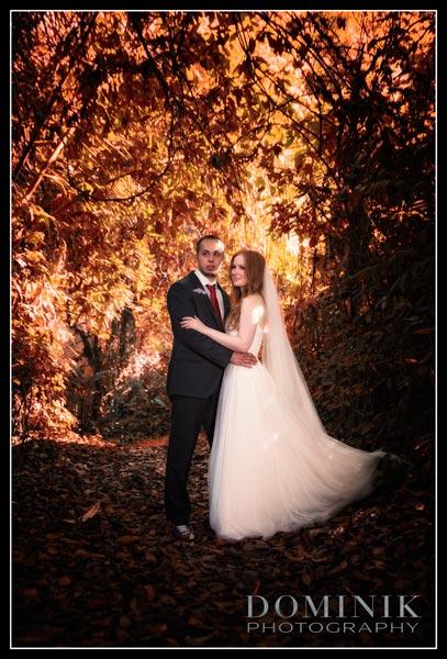 romantic honeymoon photo