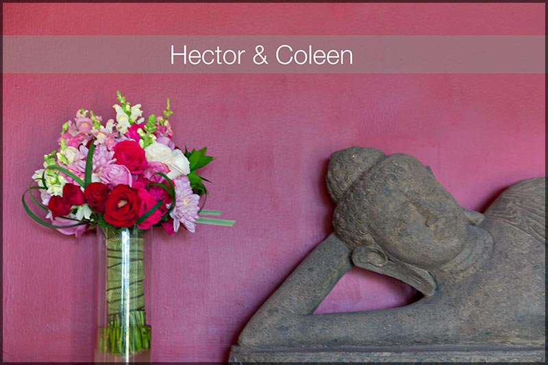 Wedding Photographer for Hector and Colleen